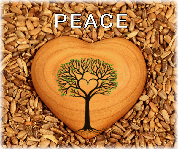 peace-heart-interfaithbook-pics